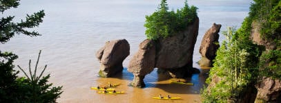 Hopewell Rocks Kayak